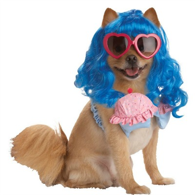 Celebrity Inspired Dog Costumes