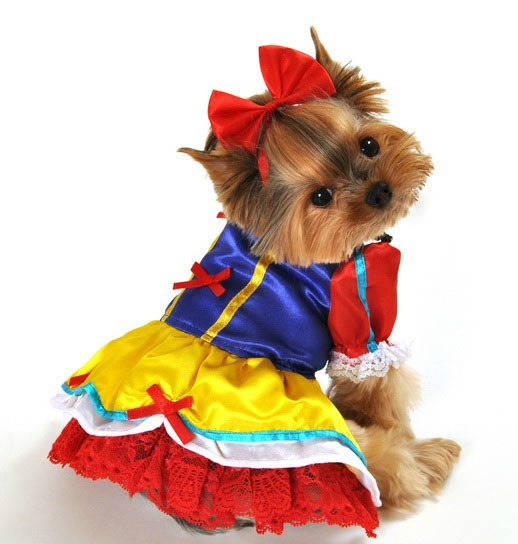Storybook Characters Dog Costumes