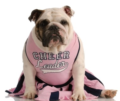 Cheerleader Dog Costumes