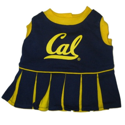 Black and Yellow Cal Berkeley Dog Cheerleader Costume