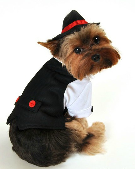 Gangster Halloween Dog Costume