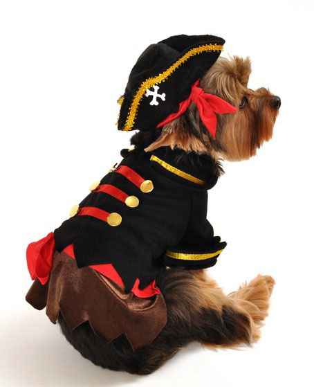 Ole' Buck Pirate Halloween Dog Costume