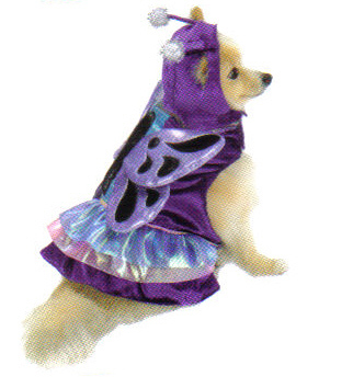 Metallic Butterfly Dog Costume