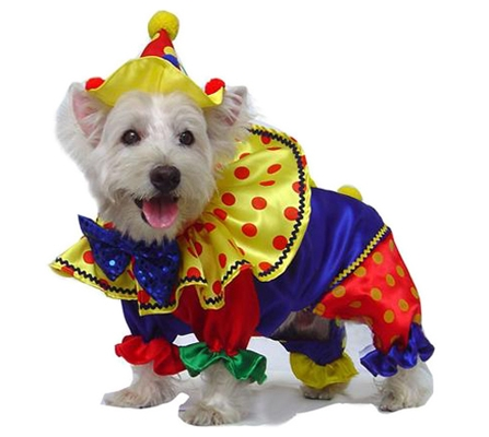 Festive Clown Costume For Dogs