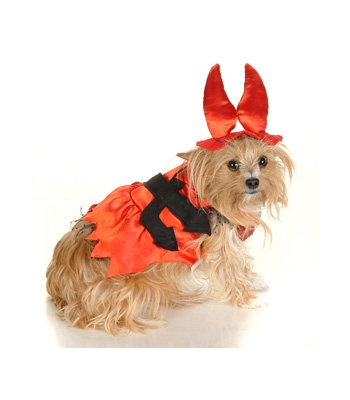 Miss Devil Dog Costume