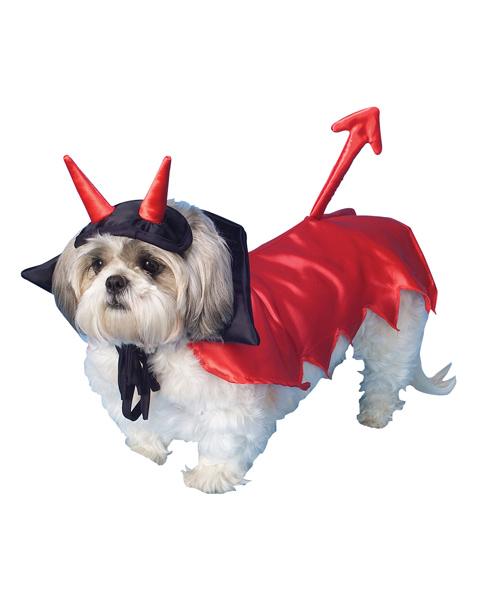Red Devil Dog Costume