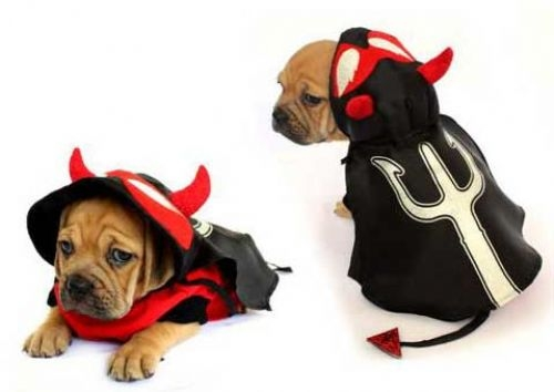 Devil Pitch Fork Dog Costume