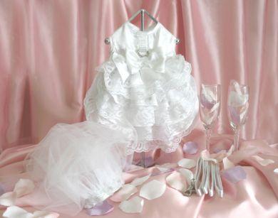 Luxury Wedding Dog Dress with Veil and Leash