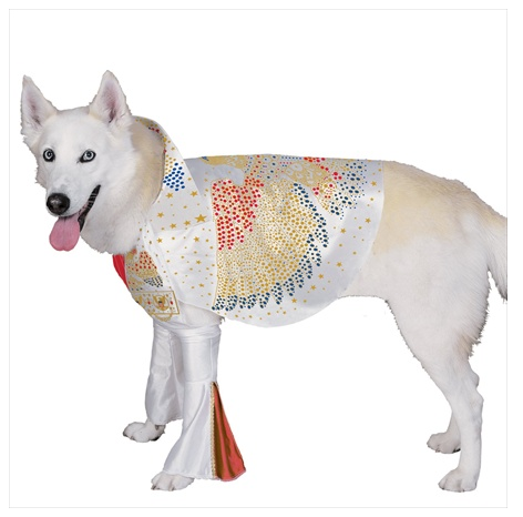 Elvis Dog Halloween Costume