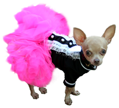 Madison Dog Pettiskirt