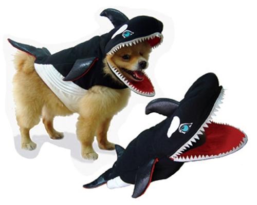 Sham-Doo Killer Whale Dog Costume