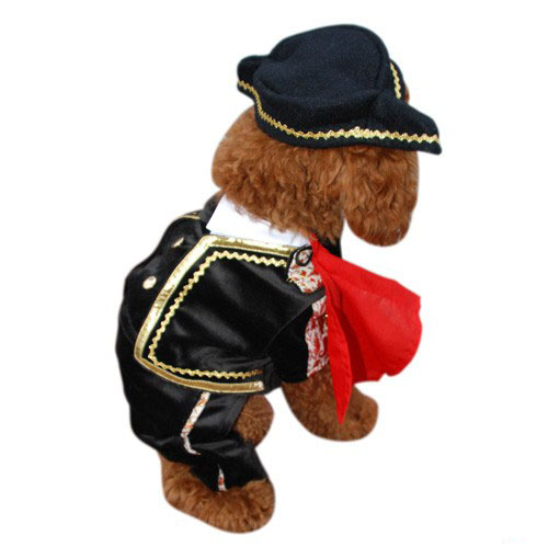 Matador Dog Costume