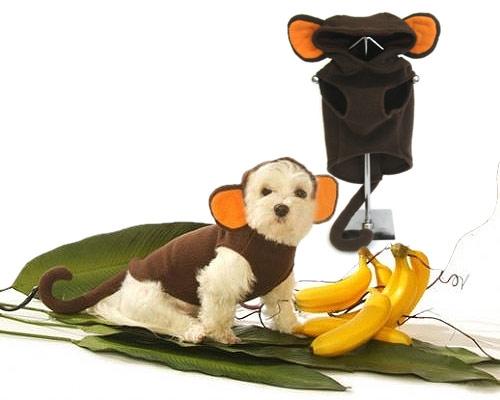Funky Monkey Dog Costume