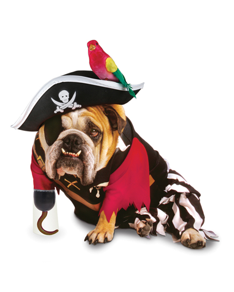 Pirate Halloween Dog Costume