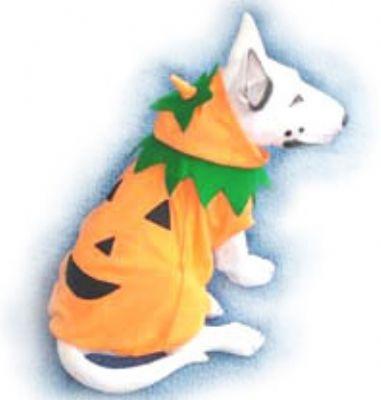 Simply Pumpkin Dog Costume