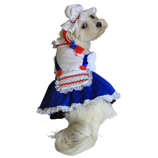 Raggedy Ann Halloween Dog Costume