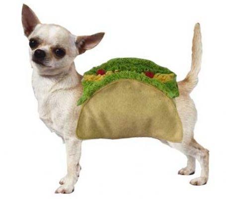 Yo Quiero Taco Dog Costume