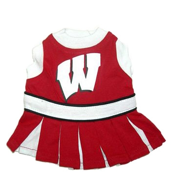 Wisconsin Dog Cheerleader Costume