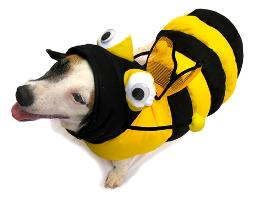3D Bumble Bee Dog Costume