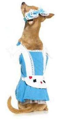 Alice In Wonderland Maid Halloween Dog Costume