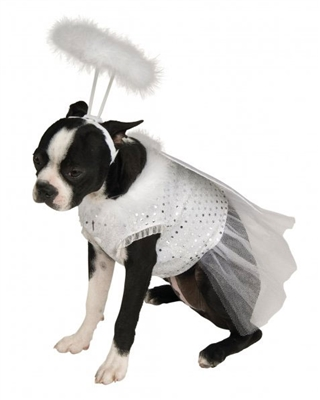 Angel Costume For Dogs