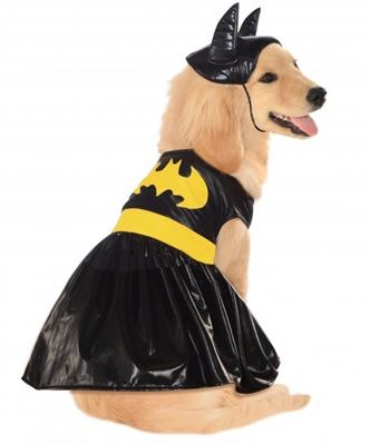 Batgirl Costume For Dogs