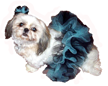 Abbey Dog Tutu