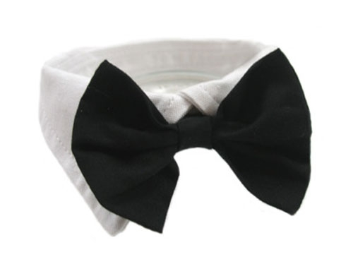 Black Bowtie Dog Collar