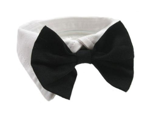 Black Bowtie Dog Collar