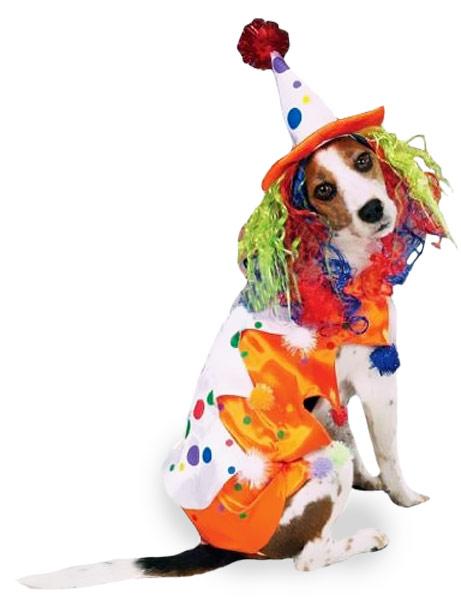 Funny Halloween Clown Dog Costume