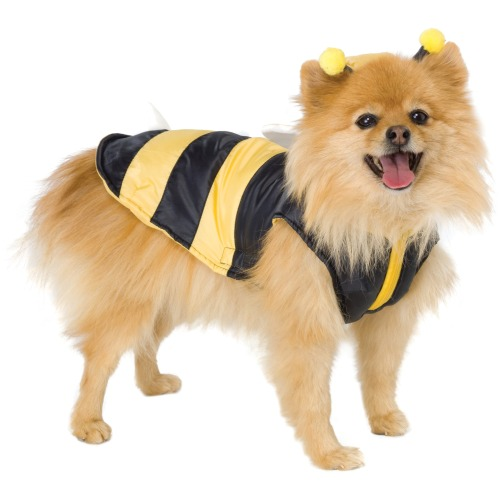 Bumble Bee Halloween Costume For Dogs