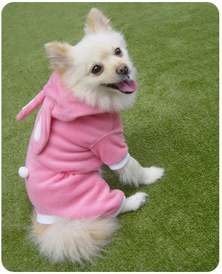 Pink or Blue Bunny Easter Dog Costumes