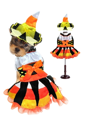 candy cravin witch dog halloween costume