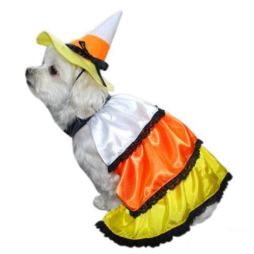 Candy Korn Dress Dog Costume