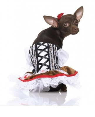 Renaissance Corset Dress Halloween Dog Costume