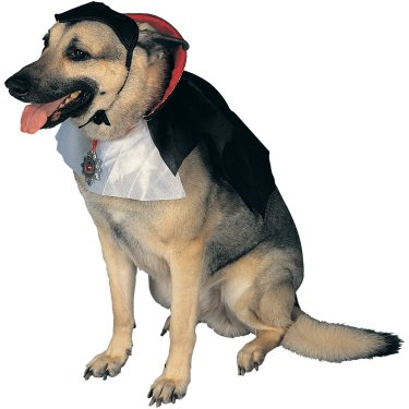 Count Dracula Halloween Costume For Dogs