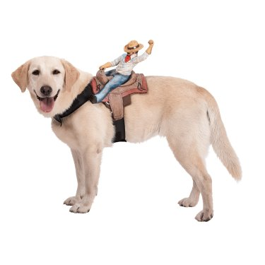 Ride Em' Cowboy Halloween Costume For Dogs