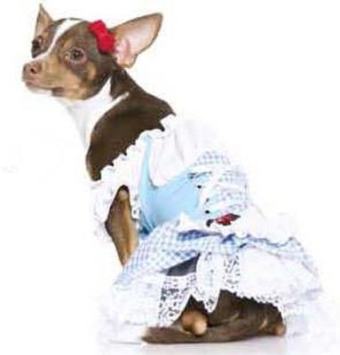 Dorothy Corset Halloween Dog Costume
