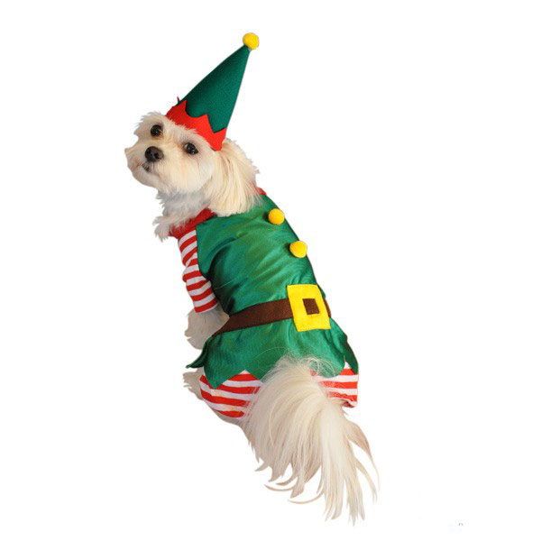 Elf Christmas Dog Costume
