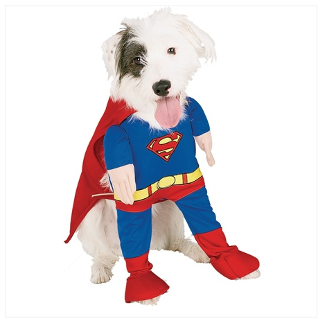 Funny Superman Dog Halloween Costume
