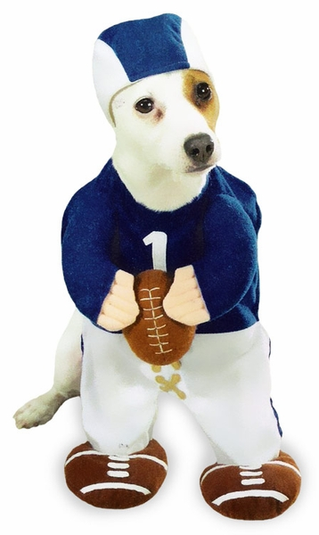 Funny Football Player Dog Costume