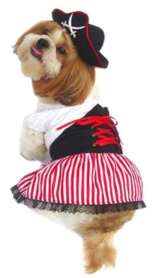 Ahoy Girly! Pirate Dog Costume
