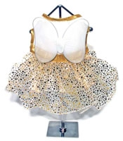 Gold Fairy Dog Dress Costume With Wings