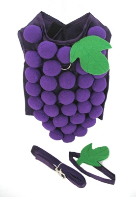 Grapie Grape Dog Costume