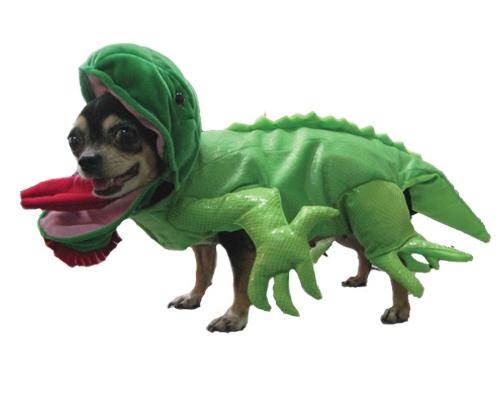 Green Dragon Halloween Dog Costume