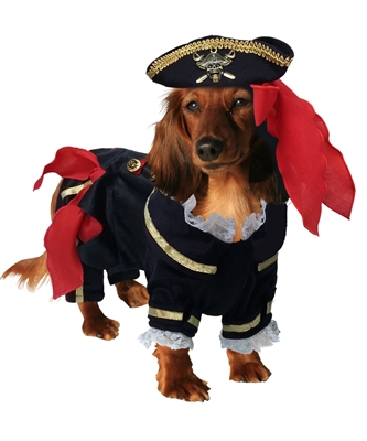 Jack Spawrrow Pirate Caribbean Halloween Dog Costume