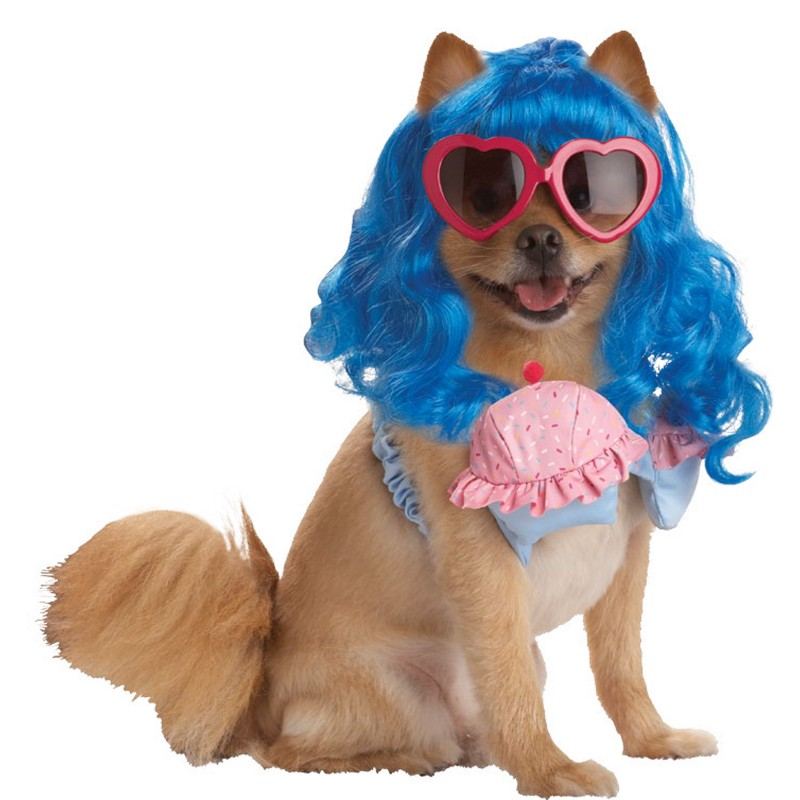 Katy Perry Inspired Halloween Dog Costume