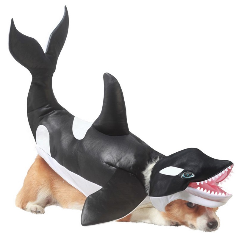 Killer Whale Halloween Dog Costume