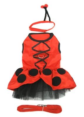 Fairy Ladybug  Dog Costume