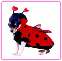 LadyBug Dog Costume With Wings
